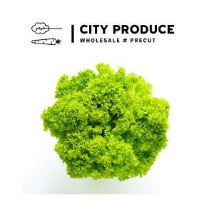 City produce lollo biondi each 1631573970