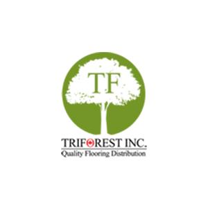 Original triforest 1592345938