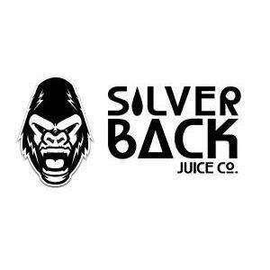 Original logo silver 1592346142