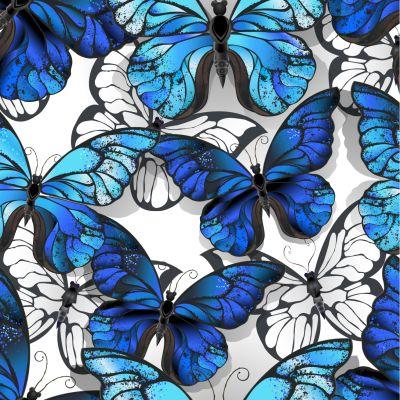 Butterflies 1612448744