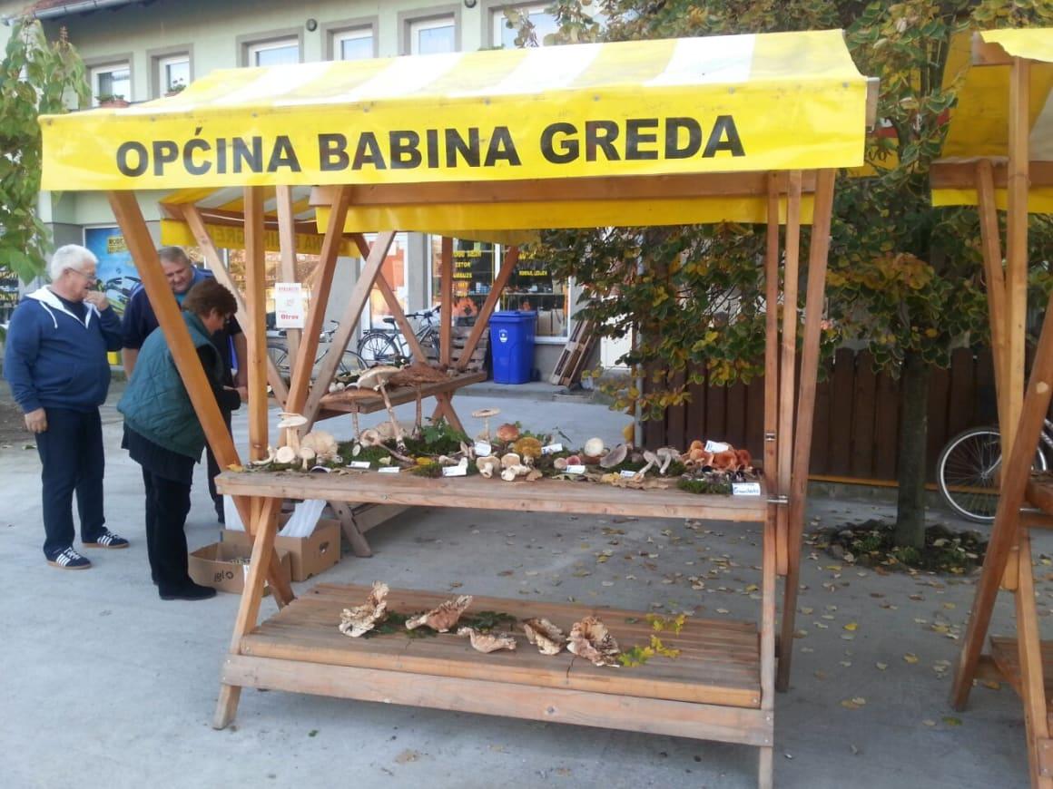 Na izložbi gljiva