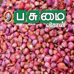 Pasumai Vikatan (பசுமை விகடன்) - 25.11.2018