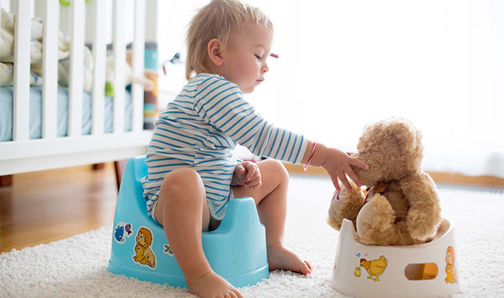 10 toddler toilet learning essentials