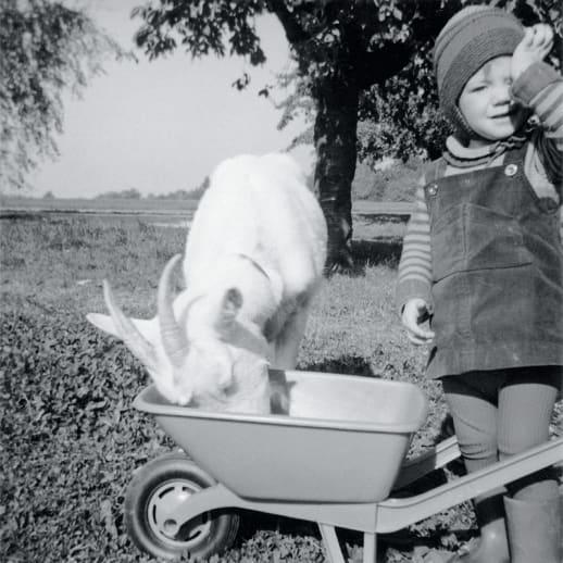 Biografien-Special: Mein Leben in Haustieren