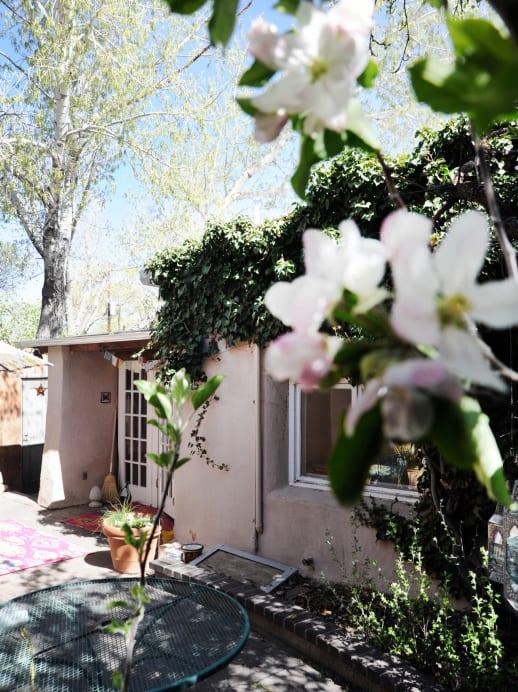 Ausgewandert: Zu Besuch bei Autorin Milena Moser in Santa Fe