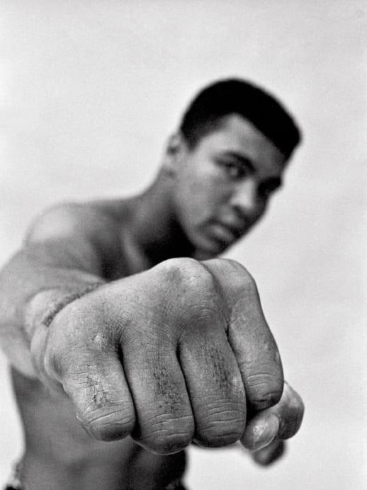 Ali und der Champion: Buch-Tipp «Big Champ»