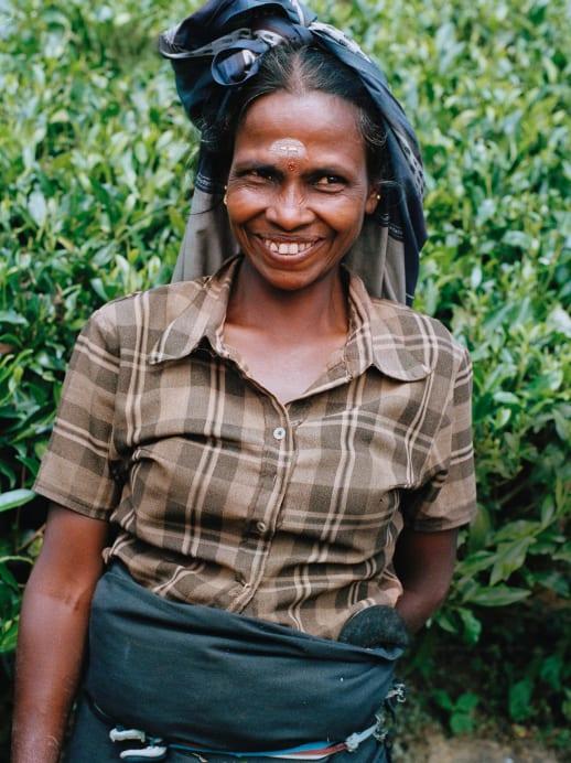 Women at Work: Teepflückerin Deivenayagi