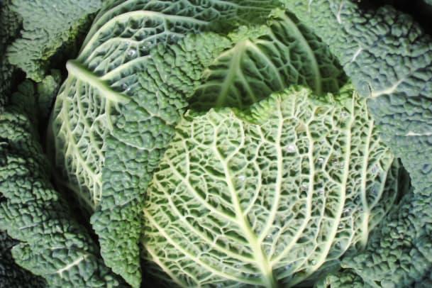 Green Smoothies: Tipps und Fakten von annabelle.eBalance