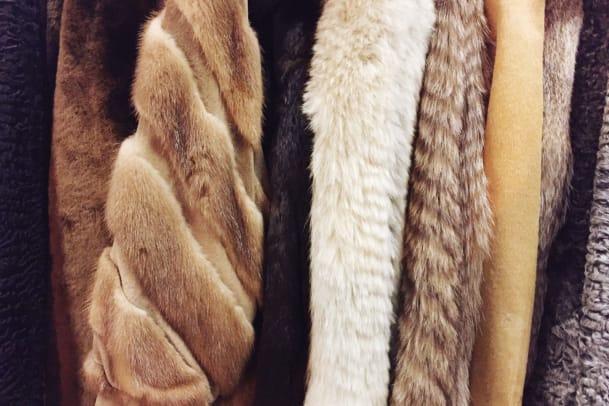 Modelagentur Linden Staub setzt No-Fur-Policy durch