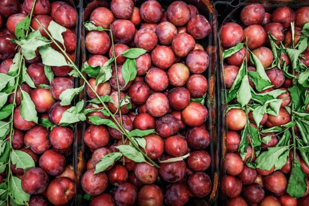 Das Food Festival «Il Tavolo» bittet zu Tisch