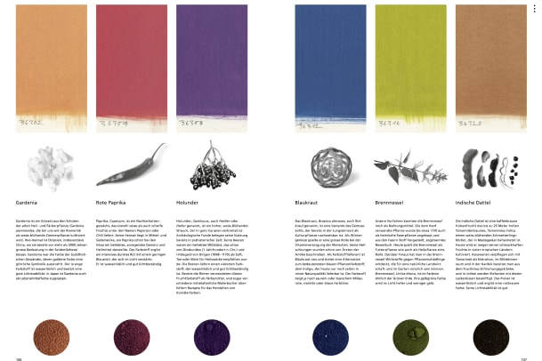 Gewerbemuseum Winterthur: Color my life