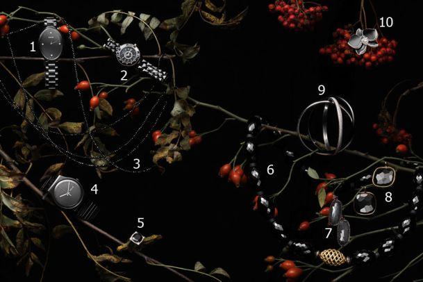 Schatzsuche: Hochkarätige Uhren und Schmuckstücke
