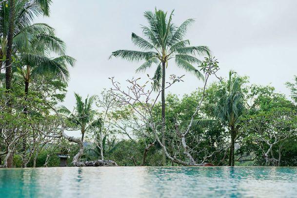 Bali: Luxus im wilden Dschungel