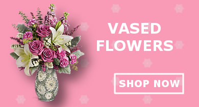 Vased Flowers
