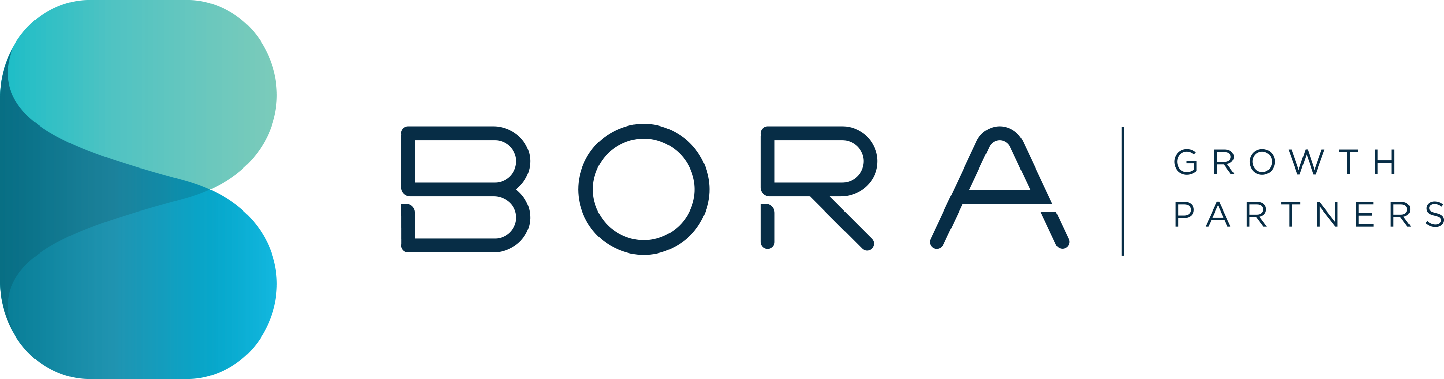 Bora Growth Partners