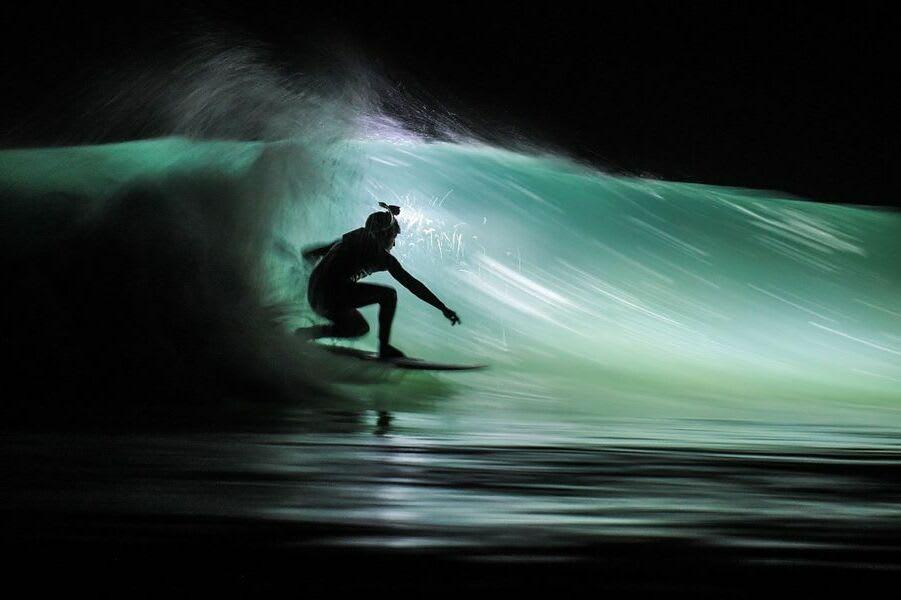 Black swan surfing night surfing company