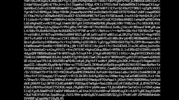 CD Projekt Red har dragit igång mystisk Cyberpunk 2077-stream