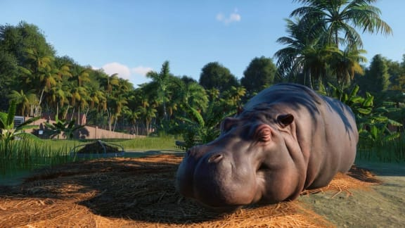 Planet Coaster-skaparnas nya managementspel heter Planet Zoo!