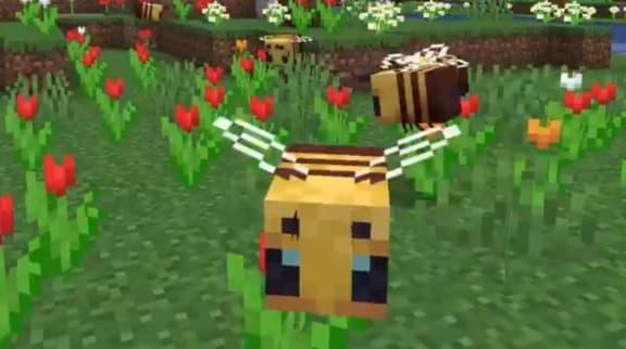 Minecraft fylls med bin