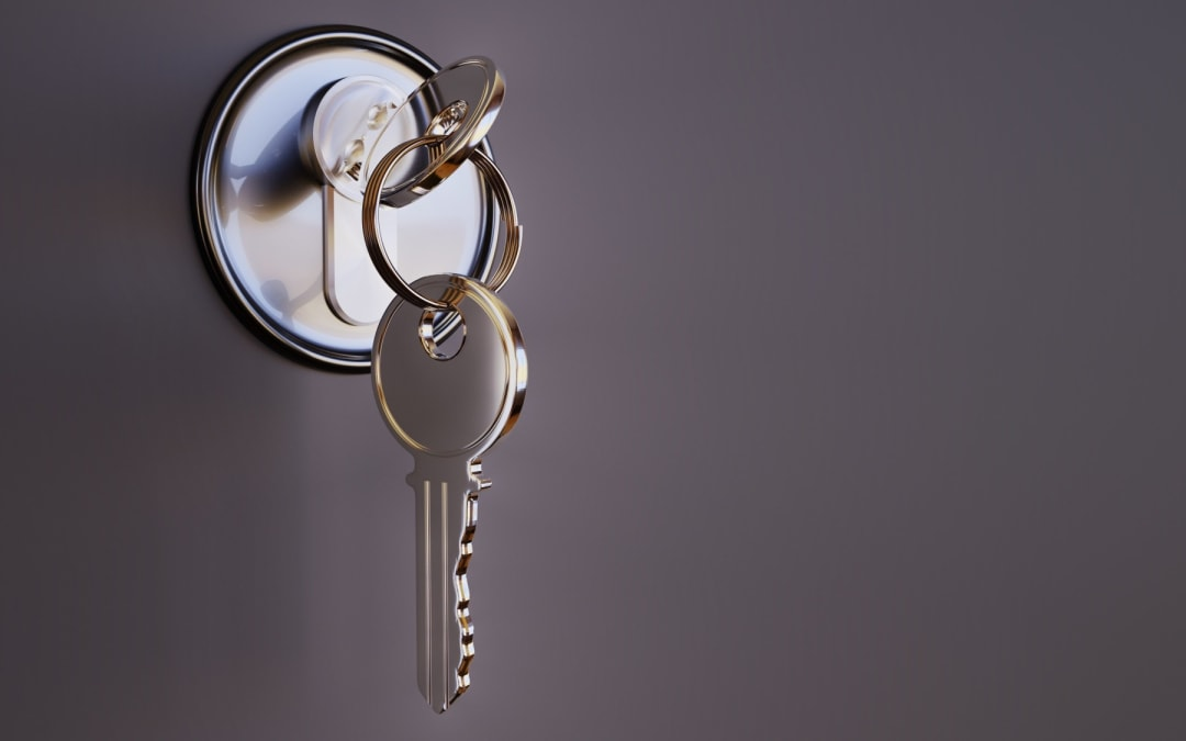 A Complete Guide on Mortise Locks, and How They Compare to Other Locks