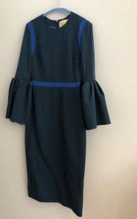 Roksanda Nair Bell Sleeve  2 Preview Images