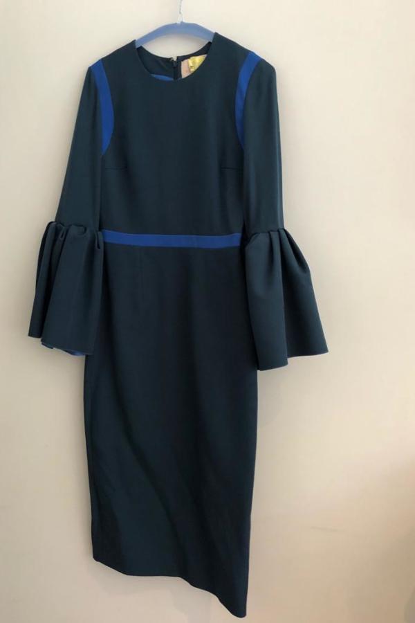Roksanda Nair Bell Sleeve  2