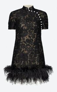 Huishan Zhang Su feather lace dress Preview Images