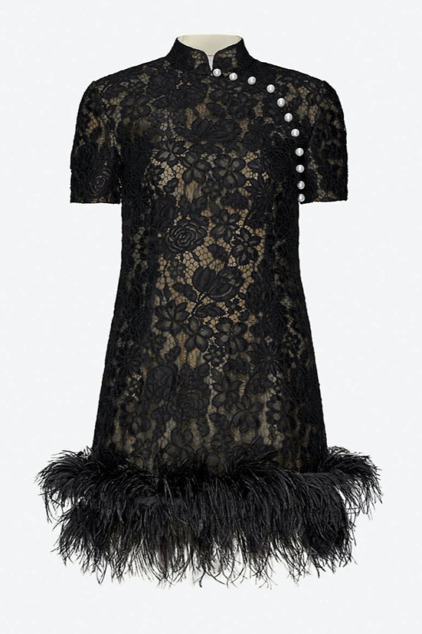 Huishan Zhang Su feather lace dress
