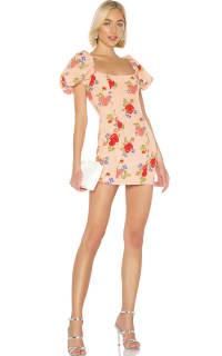De La Vali Rose Print Mini Dress 2 Preview Images