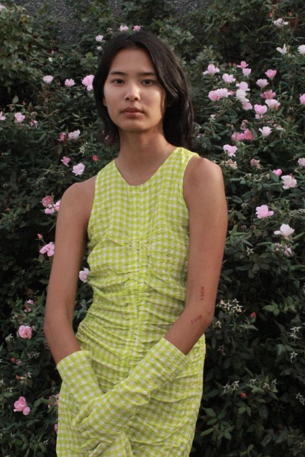 WRAY Josephine dress 6