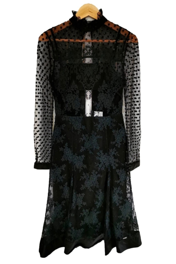 Erdem Flared A Line Lace Dress 0 Preview Images