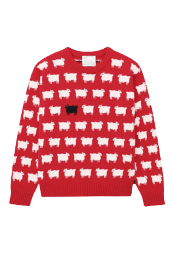 "Warm & Wonderful ""Diana"" Sheep Jumper"