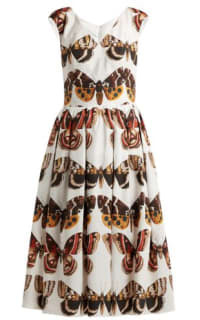 Dolce & Gabbana Butterfly-Print Dress Preview Images