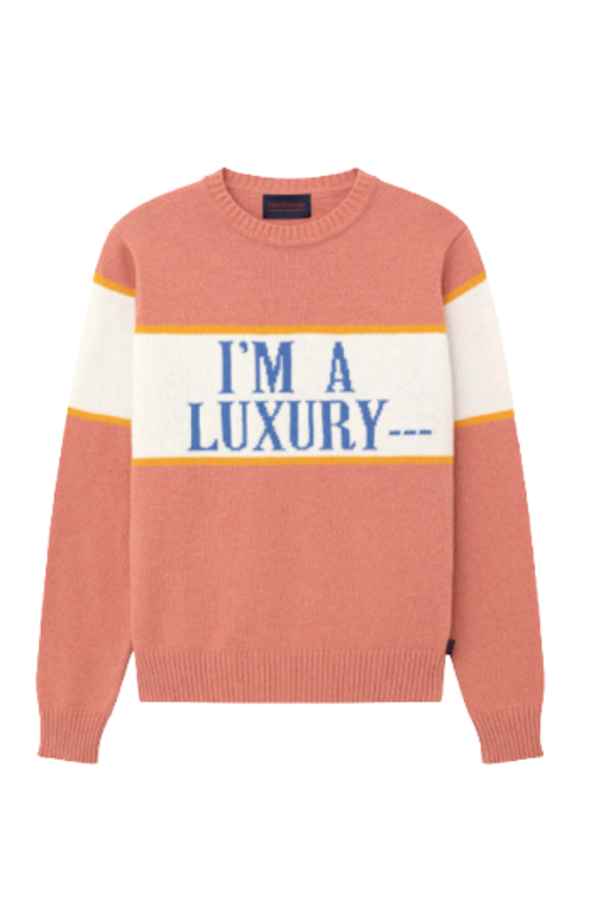 """Rowing Blazers """"I'M A LUXURY"""" Iconic Diana Jumper 2"""