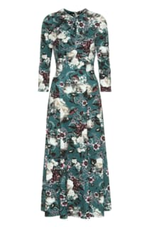 Erdem Caralina Floral Dress Preview Images