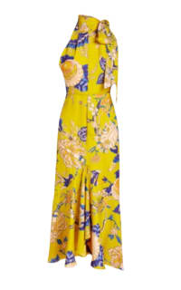 Whistles Peria Exotic Floral Dress Preview Images