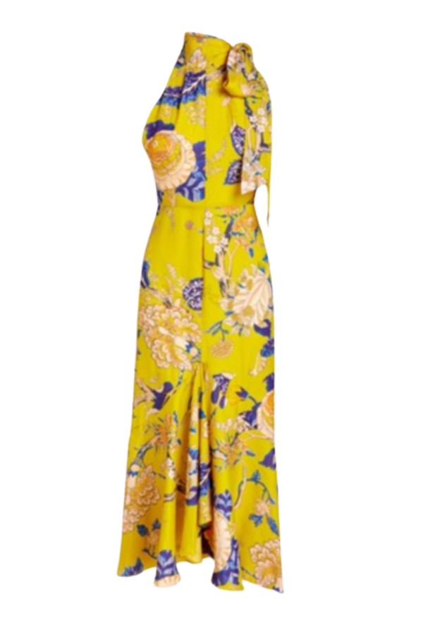 Whistles Peria Exotic Floral Dress