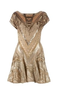 Matthew Williamson Embellished Dress in Gold Preview Images