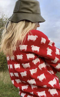 "Warm & Wonderful ""Diana"" Sheep Jumper 4 Preview Images"