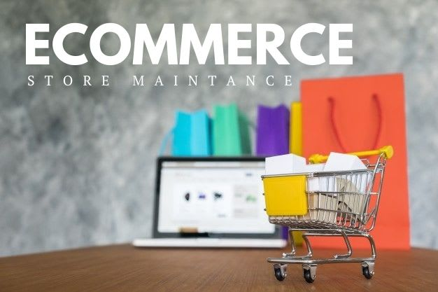 Ecommerce website Maintaince