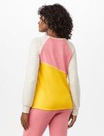 Color Block Sweatshirt w/ Stitch Detail - Coral - Back