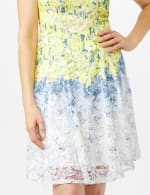 Sleeveless Ombre Floral Lace Dress - 2