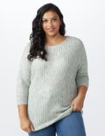 Westport Zig Zag Stitch Curved Hem Sweater - Plus - Pastel - Front