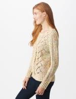 Roz & Ali Novelty Fringe Pullover Sweater - 4