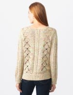 Roz & Ali Novelty Fringe Pullover Sweater - Multi - Back