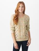 Roz & Ali Novelty Fringe Pullover Sweater - Multi - Front