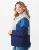 Color Block Cowl Neck Knit Top - Plus - 2