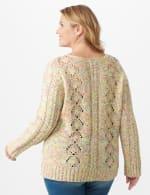 Roz & Ali Novelty Fringe Pullover Sweater - Plus - Multi - Back