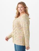 Roz & Ali Novelty Fringe Pullover Sweater - Plus - 4