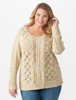 Roz & Ali Novelty Fringe Pullover Sweater - Plus - 6